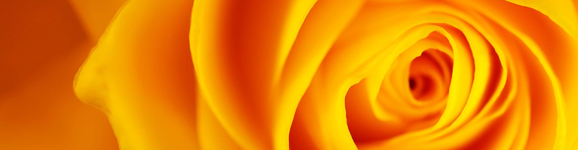 spirali-01